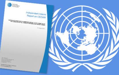 Engelli Kadınlara Yönelik Şiddet Olayları Hakkındaki Bilgi Notu BM'ye İletildi